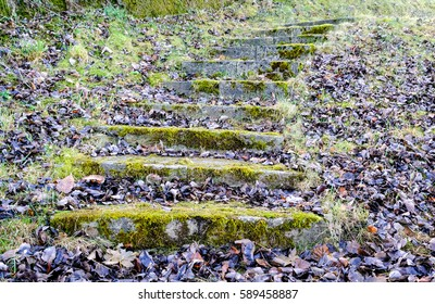 old steps at a meadow