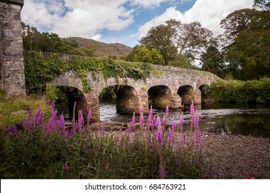 Old stone bridge in Killarney National park, Ireland