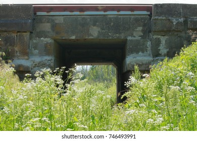 old stone bridge under the railway around green grass and flowers in the summer