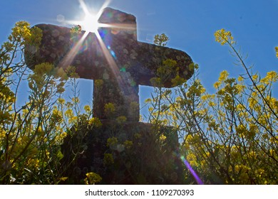 old stone cross in the rape field against light for pilgrims on the Way of St. James near Artajona, Navarra, Basque Country, Spain, Europe