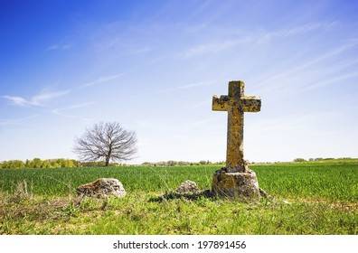 Old stone cross, a tree in a green field and bright blue sky