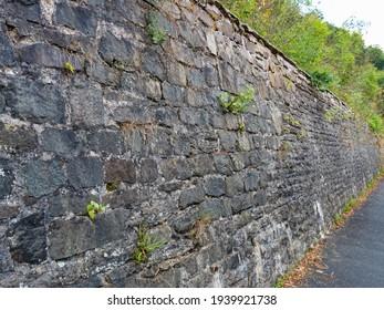 old stone fence, stone fence