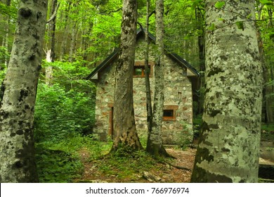 Old Stone House Deep In The Forest Abandoned Woods