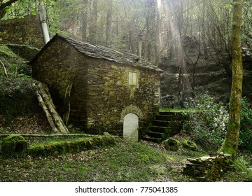 old stone mill in the forest