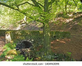 the old stone packhorse bridge crossing hebden water in calderdale surrounded by bright sunlit spring woodland trees