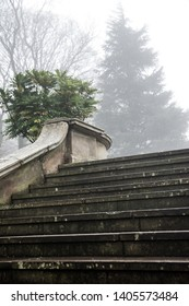 Old stone staircase in English park in the fog and mist, gloomy and broody mood, contemplate and melancholy, goth feel.