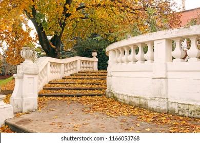 Old stone staircase with fallen leaves autumn season
