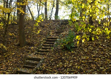 Old stone stairs in the forest in the autumn.
