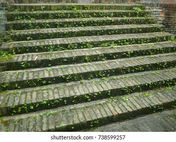 Old stone stairway covered in green grass leading upwards.