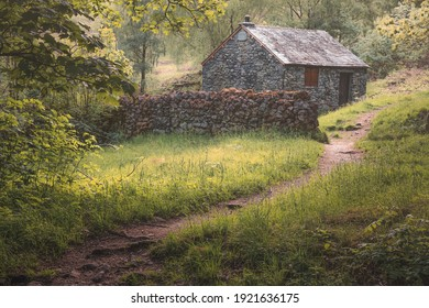 An old stone wall and bothy secluded in nature at Ashness Wood near Keswick in the Lake District, Cumbria, England.