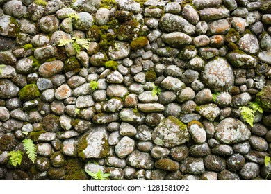 Old stone wall with moss and plants growing background stock image