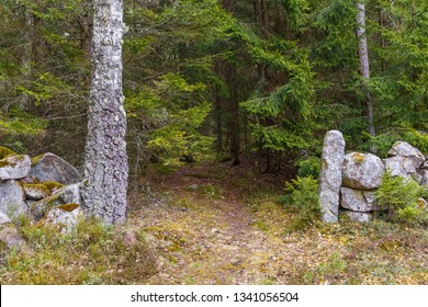 Old stone wall and a path by the woods