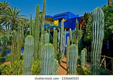 The old studio of Jacques Majorelle, now the Museum at Jardin Majorelle in Marrakech with a display of immaculate cactus and succulents