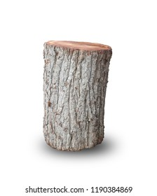 Old stump Isolated on white background. This has clipping path.