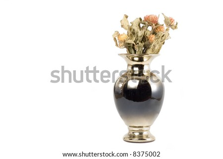 Old Style Vase Dead Flowers Isolated Stock Photo Edit Now 8375002
