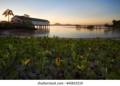 Old sugar wharf in Port Douglas, Australia