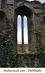 Old tall windows with ivy at church ruins, mountains at back. West of Ireland.