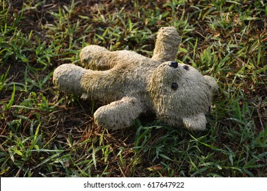 Old teddy bear abandoned on the grass/Lonely bear/Old abandoned bear