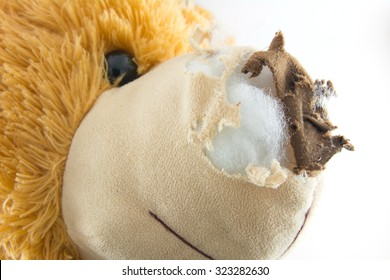 Old Teddy bear damage