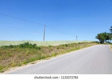 Old telephone line on the field of grain by the road