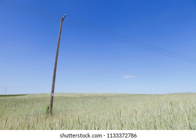 Old telephone line on the field of grain