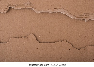 Old textured cardboard sheet with torn edges. Brown cardboard torn off. Cardboard texture.