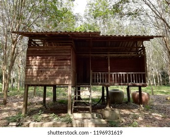 Here's the Old Thai Southern Wooden Home in the Rubber Trees Plantation. It's been deserted since 2000 but it's still stable today (2018).