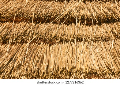 Old thatched roof in brown color