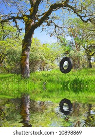 Old Tire Swing in an Oak Tree in Spring Reflecting in Water