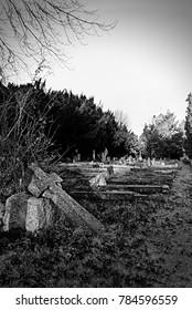 Old tombstones in graveyard