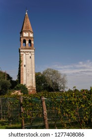 Old Tower Architecture in Vineyard