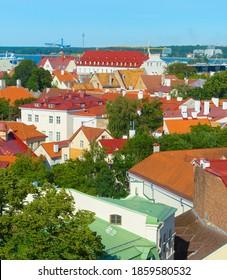 Altstadt-Architektur von Tallinn mit Fernsehturm im Hintergrund. Estland