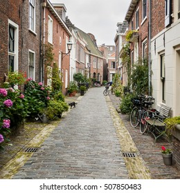 Old Town, Haarlem, Netherlands. Bicycles and pot plants adding character to a cobbled side street in a typical Haarlem side street.