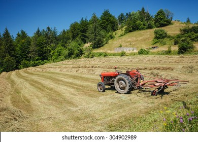 Old tracktor on the field with dry hay, Serbia