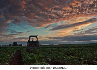 An old tractor parked on the fields to be ready first thing next morning. The sun sets over the potato fields.