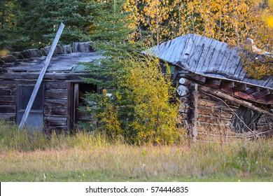 Old Trapper log cabin decayed, Copper Center, Alaska
