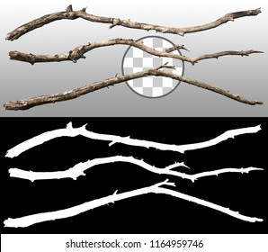 Old tree branch. Dry dead branches isolated on transparent background via an alpha channel of great precision. High quality mask without unwanted edge. High resolution for professional composition
