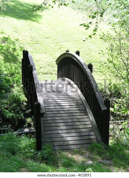 old tree bridge