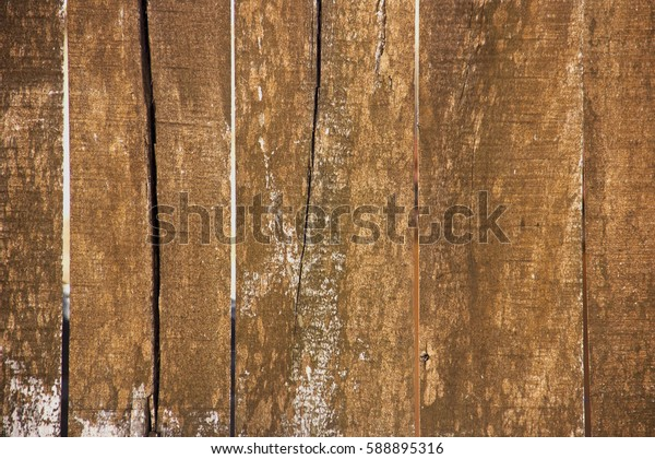 Old Tree fence texture