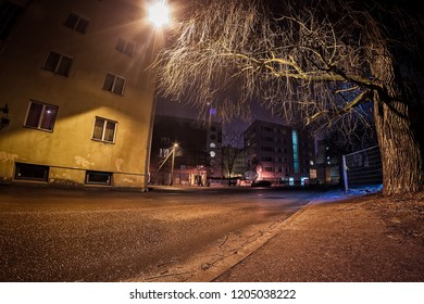 An old tree shadows the wet street on a winter night in Tallinn, the capital of Estonia. The rain is slowly melting the snow and making streets icy.