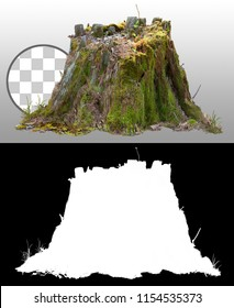 Old tree stump covered with moss isolated on transparent background via an alpha channel of great precision. Very high quality mask without unwanted edge for professional digital composition