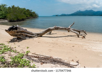 Old tree trunk laying in paradise on the white sand of a dessert tropical island with  clear turquoise waters in Asia