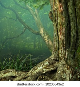 Old tree with weird chimeric crooked roots in blue hazy mysterious forest