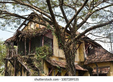 Old or vintage abandoned ruined house made with wood and bricks overgrown with trees and greenery, Kerala India. Ancient construction.