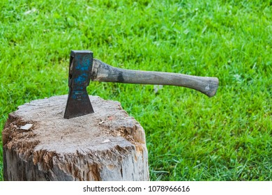 Old vintage axe is stuck in a piece of log wood emmental