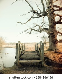 Old vintage bridge by bare twisty tree in wintertime, frozen iced lake, looking very cold and eerie.