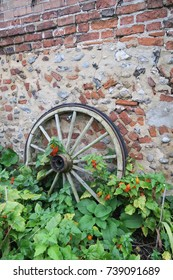 Old vintage cart / wagon wheel with red Chinese lantern flowers.