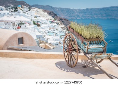 Old vintage dray/cart with plants parked on the roof with an amazing view over Mediterranean Sea and Oia, Santorini.
