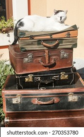Old vintage retro used leather suitcases stacked and placed one on another and cat on top in house backyard