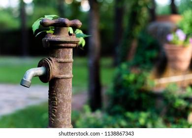An old vintage spigot in the flower garden